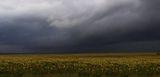 Пред буря ; comments:38