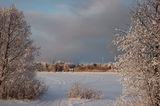Winter sunset colours ; comments:20