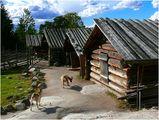 Из приказния свят на северните стопанства (Стокхолм, Швеция, от Вера Киркова) ; comments:12