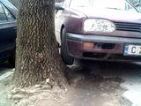 Колко много дървета... за паркиране ; comments:7