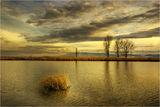 Golden sunset ... ; comments:43