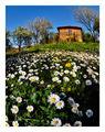 """Пролет в старото """"Ново село"""" ; comments:36"""