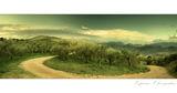 Маслиновите гори около Капрона ; comments:50