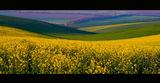 Добруджанска пролет ; comments:159