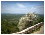 Пролет над равнината ; Comments:12