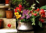 Цветя за Великден ; comments:10