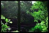 тих следобед край реката... ; Comments:2