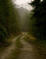 пътят към Мугла ; Comments:15