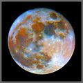Цветовете на Луната ; comments:23