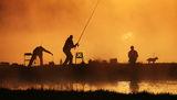 Мъглив риболов ; comments:95
