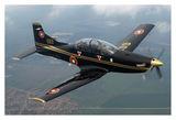 Пилатус PC-9M ; comments:41