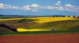 Добруджански,край село Средище ; comments:137