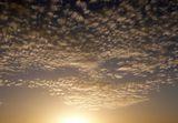 Изгрев над Средна гора ; comments:7