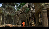 Mysterious ANGKOR ; comments:28