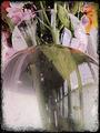 Glass Vase ; Comments:12