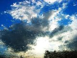 Мъгливи надежди... ; Comments:2