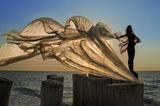 танцът на пеперудите... ; comments:57