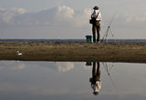 за риба ; comments:74