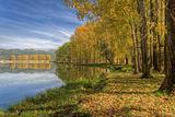 Ранна есен ; comments:50