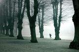 Самотният бегач ; comments:108