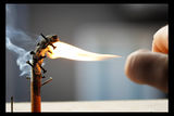 да унищожим врага ; comments:16
