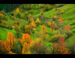 Есен в Родопите ; comments:61