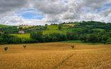 Земята на Тоскана ; Comments:23