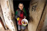ябълки за .... фотографа ; comments:58