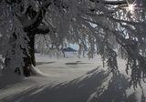 Честит първи сняг! ; comments:67