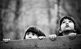 Приказки за тайната гора ; comments:68