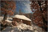 Слама, сняг и листа ; comments:45
