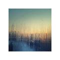 sunrise ; comments:13