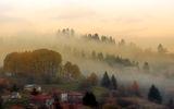 Залисани в мъглата ; comments:71