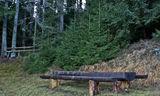 маса в гората ; comments:6