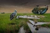 Уморени криле ; comments:42