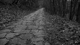 пътят нагоре ... ; Comments:2