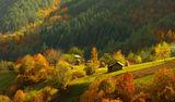Есен в Родопите ; comments:69
