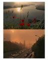 Утро по реката ; comments:24
