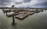 Pier 39, San Francisco ; comments:72