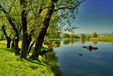 По реката ; Comments:12