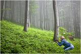 В дебнене на дивата природа ; Comments:13