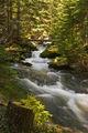 Каньон на водопадите ; Comments:12