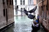 Venice ; comments:12