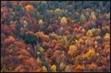 Късна есен в Средна гора ; Comments:3