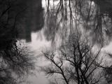 Реката на спомените ; comments:32