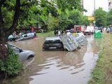 София след дъжд - Г.Милев, ул.К.Лулчев (15 06 2010) ; comments:4