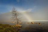 Белые радуги Ильчира ; comments:41