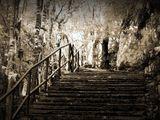 По пътеката на Надеждата......... ; comments:38