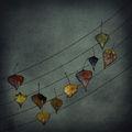 Изкривено петолиние на есенните тонове ; comments:45