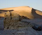 Долината на мидите ; Comments:17